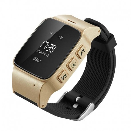 Взрослые часы с GPS EW 100 1 золото